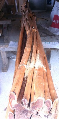 http://www.yuukoubou.net/blog/IMG_8253.jpg